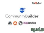 1589350236_community-builder-pro.png